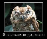Вячеслав Владимирович, 23 апреля 1999, Москва, id178443177
