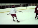 Hilary Knight sick goals and trick shots
