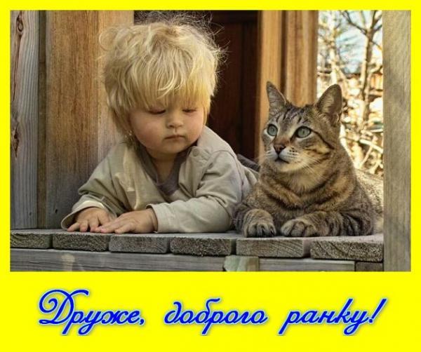 Павленко отозвали с должности министра, чтобы его обезопасить, поскольку ему не давали контролировать ситуацию в аграрном секторе, - Сыроид - Цензор.НЕТ 2781