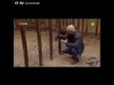 🚩Даже детёныши носорога очень опасные существа🚩