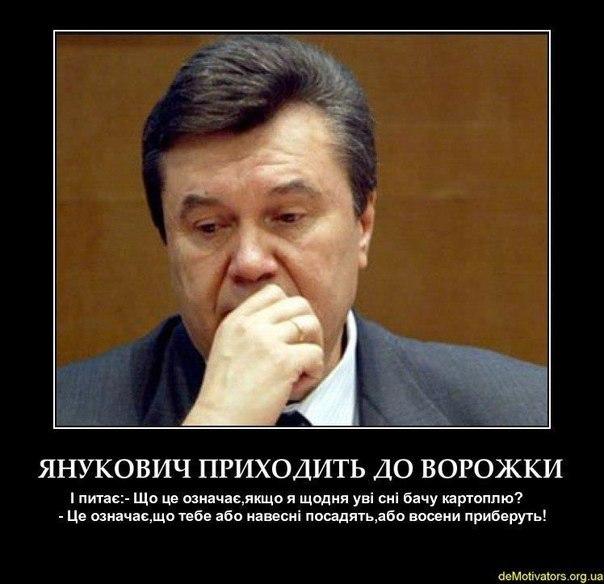 """Герман об освобождении Тимошенко по законопроекту Лабунской: """"Этого мы поддержать не можем"""" - Цензор.НЕТ 6926"""