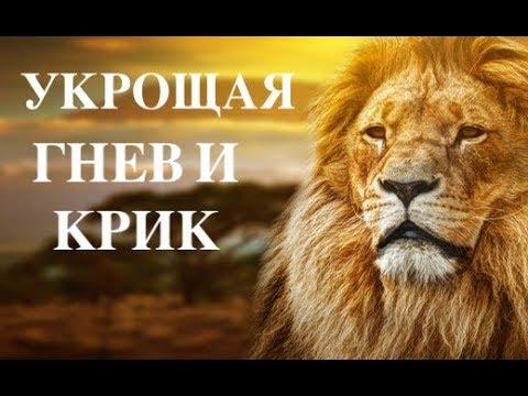 УКРОЩАЯ ГНЕВ И КРИК - Вячеслав Бойнецкий