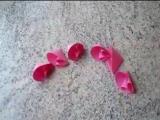 Красивейшие цветы из бумаги!