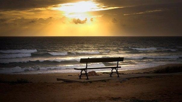 Скамейки, идеальные для размышлений о том, куда катится жизнь