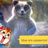 Анкета Алекс Хоритонов