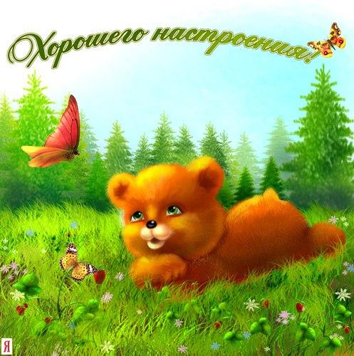 http://cs416325.vk.me/v416325730/48f5/3-IuGW-arrg.jpg