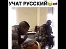 прикол учат русский великий и могучий язык
