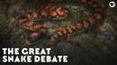 The Great Snake Debate