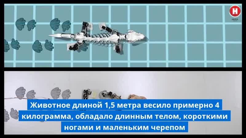 Учёные воскресили древнюю ящерицу в виде робота ex`yst djcrhtcbkb lhtdy zothbwe d dblt hj jnf