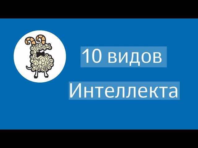 10 видов интеллекта - Бэби-клуб