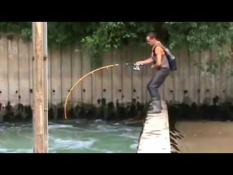 CRAZY MAN FIGHT BIG CATFISH OVER A DAM IN A STRONG RIVER CURRENT HD by CATFISH WORLD