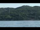 Дельфины в Новомихайловке