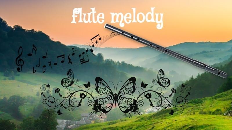 Whistle Вистл флейта low D Tin Whistle Очень красивая мелодия whistle flute song