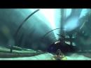 Shark Tank Water Slide at Siam Park