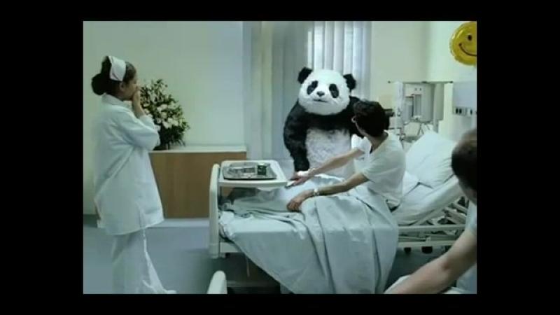 Vidmo_org_Panda_ne_khujjnya_450-4.mp4