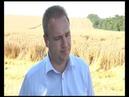 Глава Тбилисского р на Е Ильин на уборке урожая в АО Заря ТРК Метроном 3