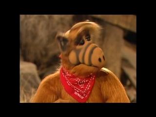Alf Quote Season 4 Episode 20_Жуки