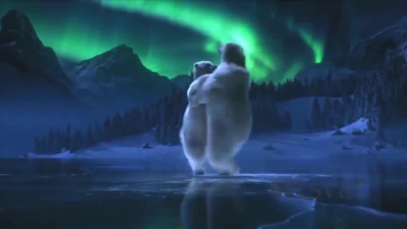 Белые медведи - романтичный танец на льду