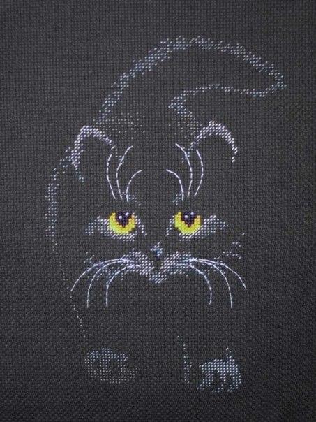 Как вышить черного кота?