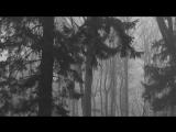 Vinterriket - Frostestrube