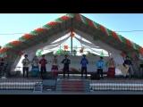 Выступление народного ансамбля казачьей песни