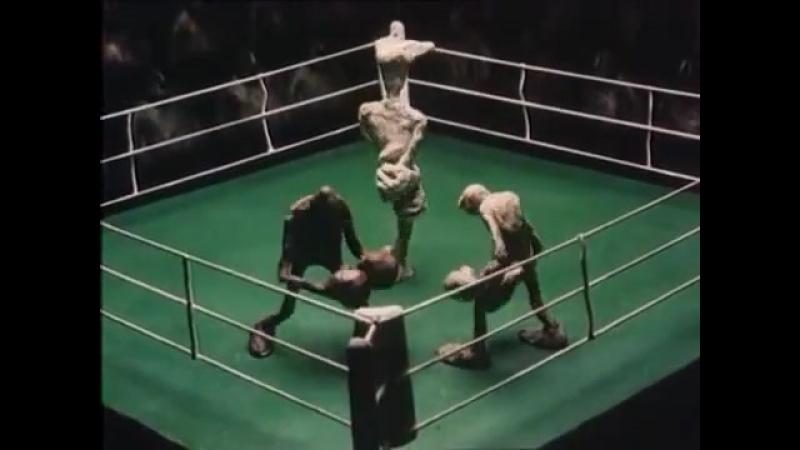 Брэк, бокс.