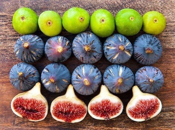 10 осенних продуктов, которые обогатят организм витаминами. Включить в рацион!
