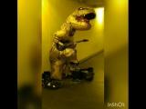 Nothing Else Matters(Metallica) в исполнении динозаврика