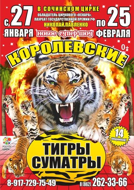 Билета в цирк за 1 рубль на сайте