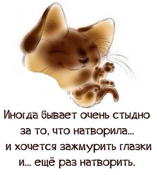 https://pp.vk.me/c7010/v7010655/233a/k6SasI_li94.jpg
