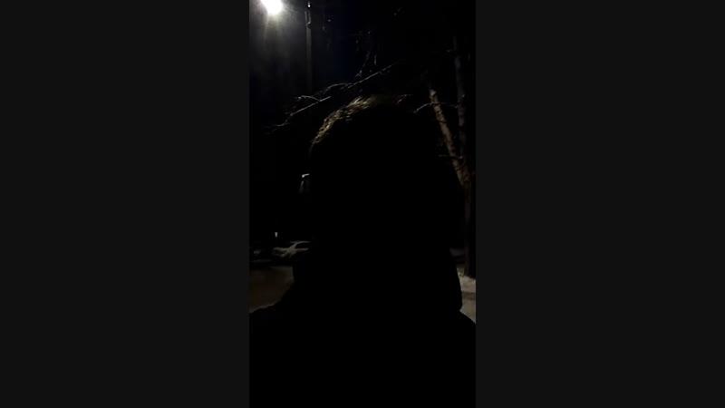 Алексей Черепанов - Live