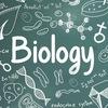 Кружок по олимпиадной биологии