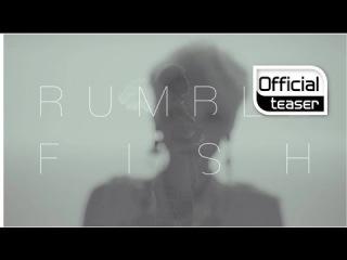 Rumble Fish - The Virulent Song (Teaser)