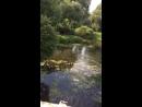 Водяной из Васькино