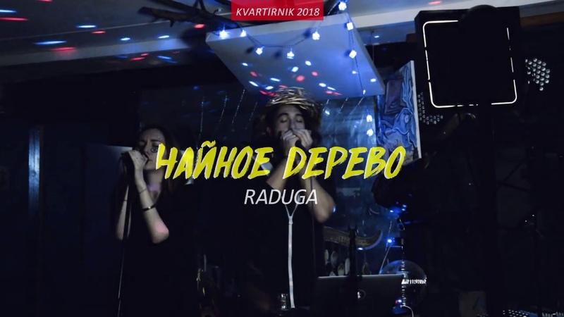 Чайное Дерево - РАДУГА Live (Квартирник январь 2018)