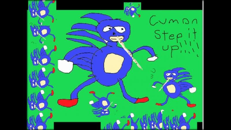 Sonic the hedgehog Green Hill shitty Blockflöte cover 1