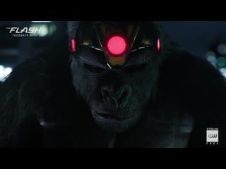 The Flash - Inside- King Shark vs. Gorilla Grodd - The CW
