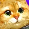 Ducat's indie games (Armored Kitten)