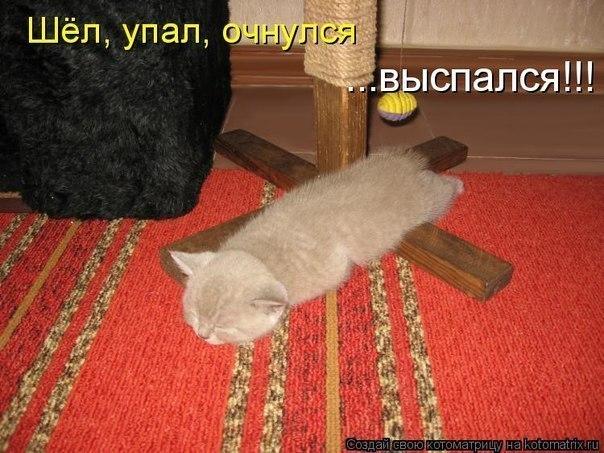http://cs319225.userapi.com/v319225400/25ca/h3lfOACMnIM.jpg