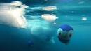 Pokémon GO Discover a vast new world