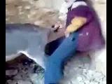 Balıkesirin Çılgın Eşekleri ni Siken Yılgın Çocuk :D
