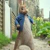 Клуб - Тэнгу Про идёт на Кролик Петер