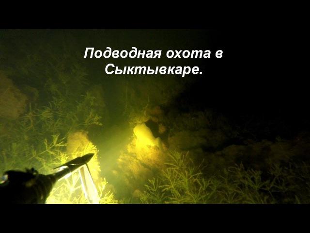 Подводная охота в Сыктывкаре 2017. Карась, щука, окунь.