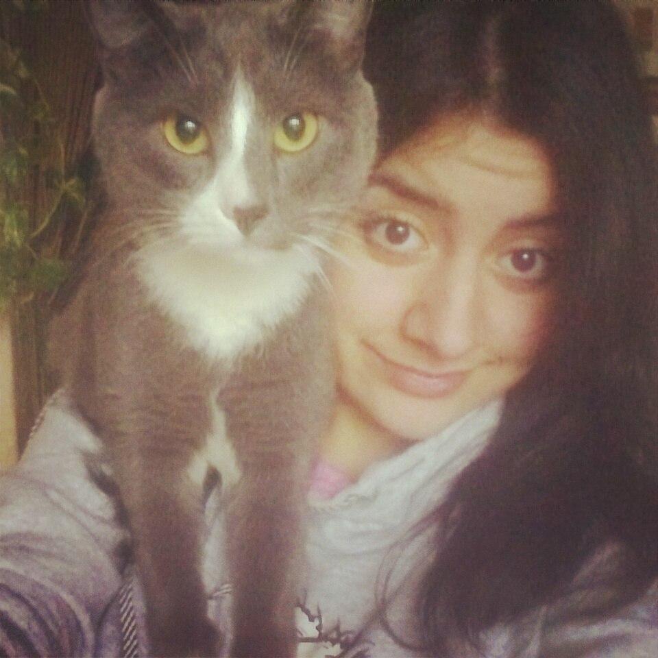 Мой котейка