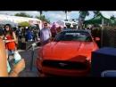 ЖИЗНЬ ВО ФЛОРИДЕ ФЕСТИВАЛЬ МУЗЫКИ НА ВОДЕ SunFest Florida
