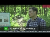 Жителям Старого Оскола грозит штраф в 3,5 млн рублей за благоустройство парка