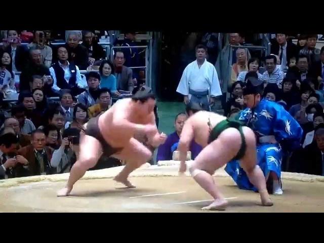 Osaka 2015 Day 2 Hakuho v Sadanoumi