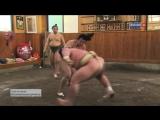 Соль на песке. Истинная жизнь сумоиста - Salt on sand, the real life of a sumo wrestler -