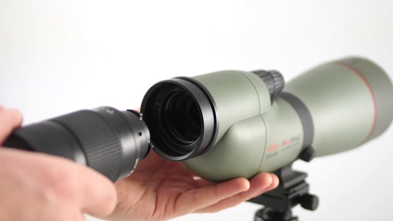 Kowa System TSN-PA7 Digiscoping made easy