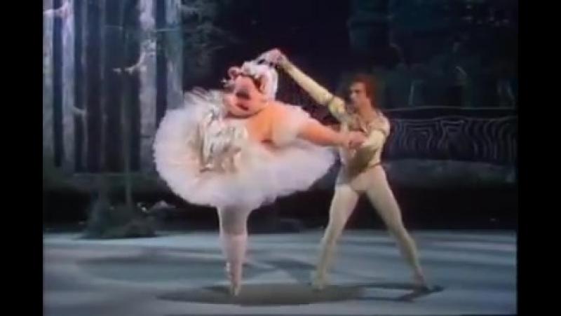 СВИНКА-балеринка! 😂🐷